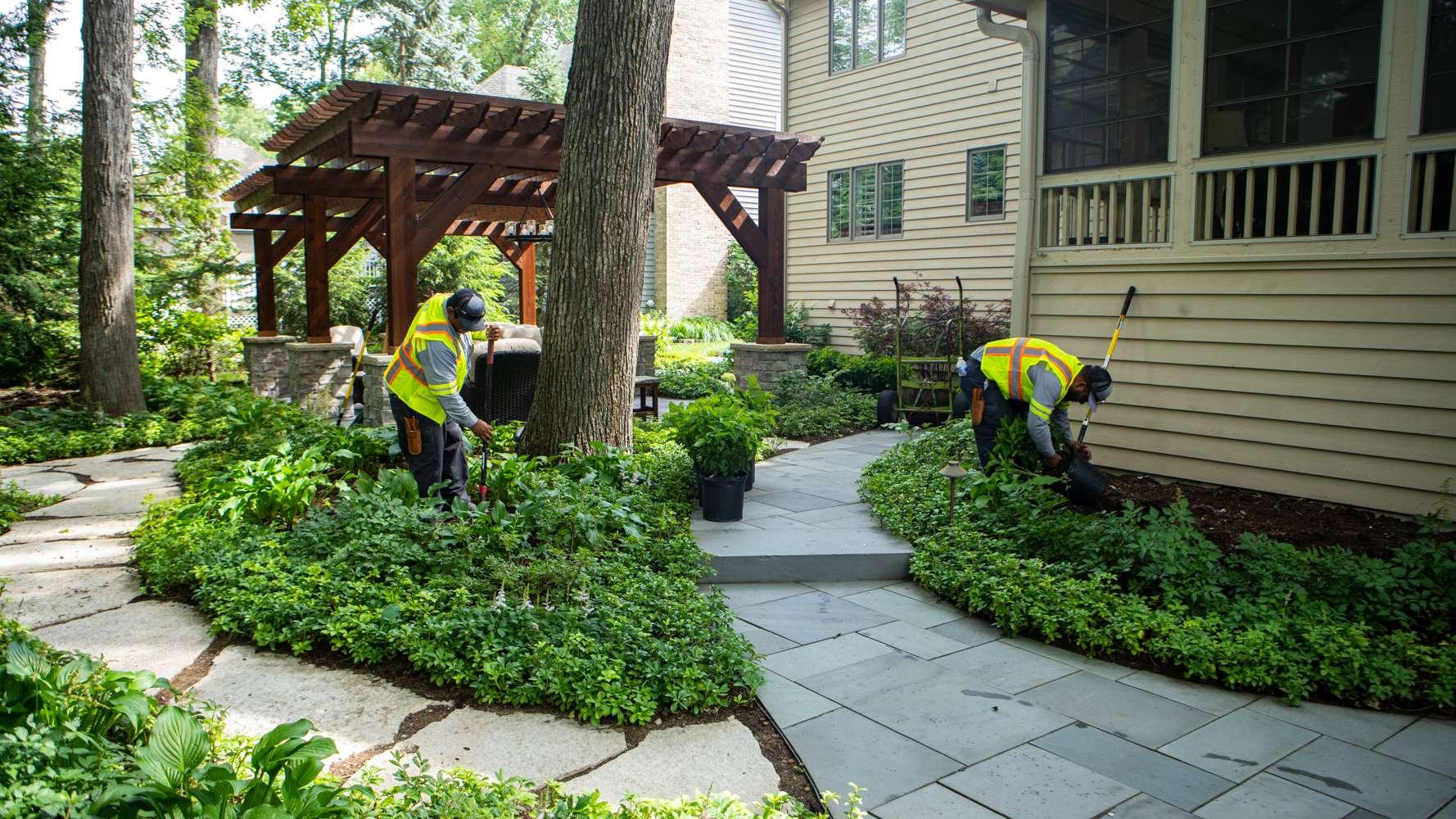 landscaping around walkway