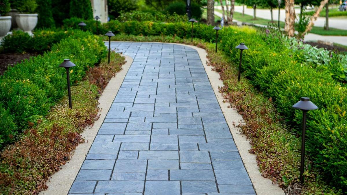 boxwood line walkway with landscape lighting
