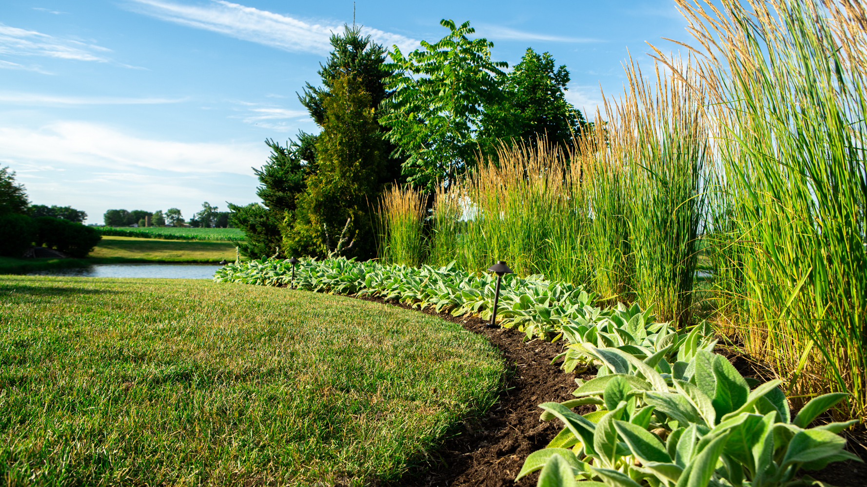 Landscape design with privacy in Plainfield, IL